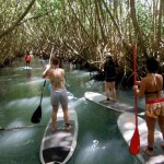 location-standuppaddle-guadeloupe (6)