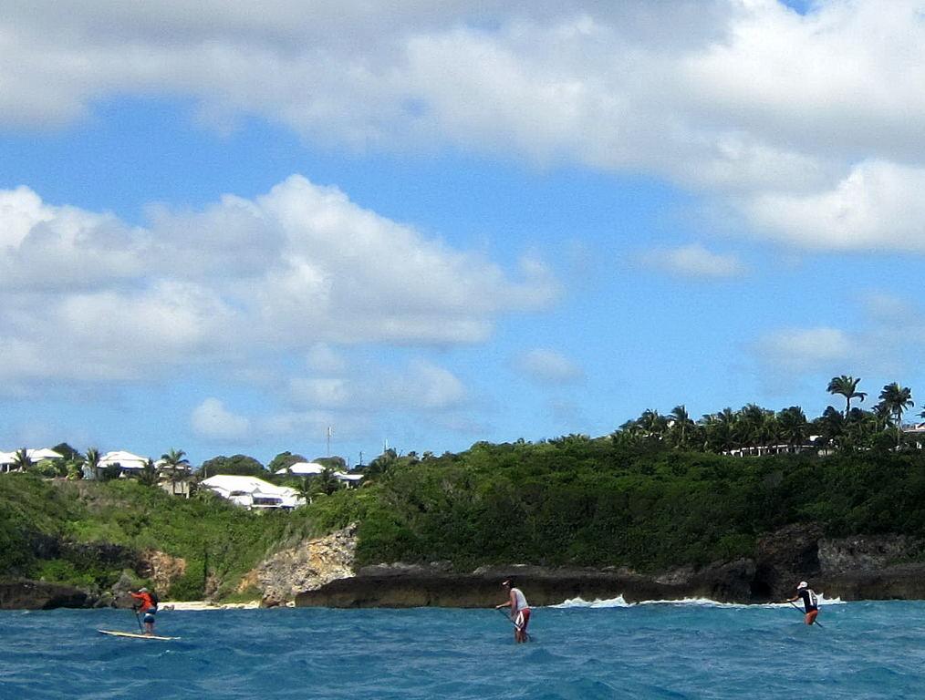La discipline reine du Stand Up Paddle. Sur les plus beaux parcours de Guadeloupe